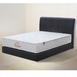 EC with 8 Inch High Dark Brown Queen Divan Bed Frame Only (Wood Structure)